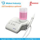 Écailleur ultrasonique dentaire du pivert Dte-D7 avec la lumière
