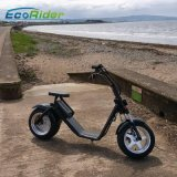 Самокат Harley колеса Ecorider 60V 2 электрический с Anti-Theft оборудованием