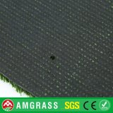 منظر طبيعيّ مرج وعشب اصطناعيّة مع [هيغقوليتي] ([أمف41625ل])