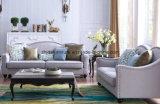 Sofá moderno vendedor caliente de la tela de la sala de estar