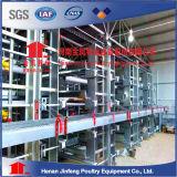 Preiswerter automatischer h-Typ Schicht-Geflügel-Geräten-Huhn-Rahmen für Landwirtschafts-Bauernhof-Gebrauch