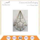 Бак для стекла Terrarium&Nbsp призмы цветков Handmade;