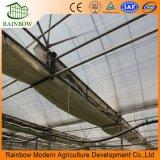 현대 농업 튼튼한 많은 필름 유리 온실