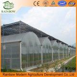 Venlo Invernadero de Vidrio / Panel de PC Invernadero para Tomate Flor de Pepino Horticultura
