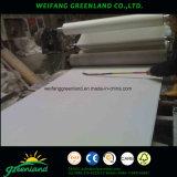El papel de madera contrachapada superpuesta
