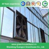販売のための上の中国の (PC)作成のポリカーボネートシートの温室