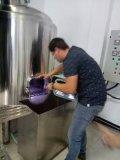 Huis-brouw de KegelGister /Brewery die van het Bier van het Roestvrij staal van de Tank van de Gister Apparatuur vergisten