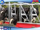 Panneau de frontière de sécurité/alimentation de /Livestock de collier de force de bétail de bétail