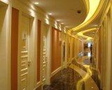 Portello interno di legno solido 1100, portello a livello del portello dell'hotel