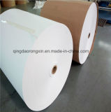 Verpacken- der Lebensmittelpapier mit PET Beschichtung für Papiercup, Nudel-Filterglocke