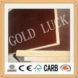 Molde usado madeira compensada enfrentado película da alta qualidade da sorte do ouro de Qingdao