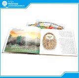 색깔 두꺼운 표지의 책 아동 도서 인쇄