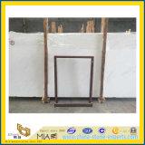 Opgepoetste Natuurlijke Witte Marmeren Plakken Ariston voor de Bekleding van de Muur (YQC)