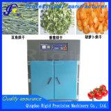 Máquina do secador da caixa da bandeja para a fruta e verdura da abóbora