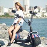 Zwei Rad Citycoco fetter Gummireifen-elektrischer Roller Ebike mit Scheibenbremse und Aufhebung