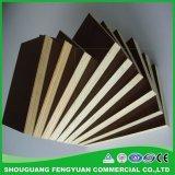 建築材料構築に使用する30倍によって使用されるプラスチック上塗を施してある合板