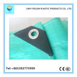 La bâche de protection de couleur vert clair de haute qualité à bas prix