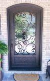 Singolo portello di entrata del ferro popolare di disegno per la Camera