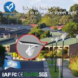 80W todo en una luz al aire libre solar del jardín del LED