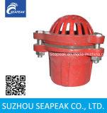 Válvula de pé vermelho de ferro fundido