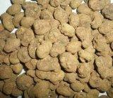 Rhizoma Corydalis Extract 98%Tetrahydropalmatine