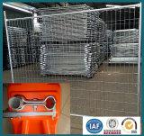 싼 농장지 담 또는 안핑 공장 최신 판매 말 검술 또는 도매 대량 가축 담 (중국 공장)
