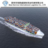Meer Shipping From China zu Worldwide durch FCL Shipment (20 '' 40 '')