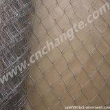 Profissional de fábrica venda quente Gabião de malha de arame galvanizado