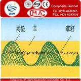 4.0mm Geonet met Geotextile voor Filter en Drainage en Protection