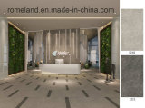 Het verglaasde Volledige Opgepoetste Grote Porselein van het Formaat/Ceramiektegels 600X1200
