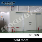 Quarto frio profissional, armazenamento frio, congelador Walk-in, quarto refrigerando