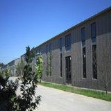 El medio ambiente la estructura de bastidor de acero de construcción de almacén