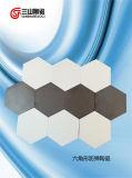Carburo esagonale di silicone e dell'allumina di ceramica