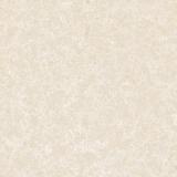 Azulejos de suelo de cerámica de la porcelana de piedra Finished nana Polished del azulejo 600*600 (WP-6AF038T)