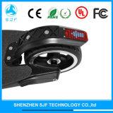 5inch 250W 전기 Foldable 스쿠터
