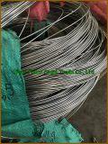 Quality 높은 TI Gr. 3 Titanium & Titanium Alloy Pipe 또는 Tube