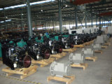 Grupo electrógeno diesel de 27kVA / Grupo electrógeno diesel Powered by Quanchai Engine