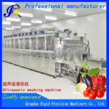 Sistemi acquosi di pulizia ultrasonica della lavatrice ultrasonica
