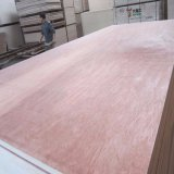 9mm/12mm/18mm Bintangor/Okoume WBP Plywood for Furniture and Decoration