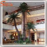 Paisagem Interior personalizado Palmeira Artificial Falso