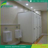 Fabriek van de Verdeling van het Urinoir van de Verdeling van het Toilet van Fumeihua Phenolic in China