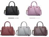 A cor de contraste de lombada Senhora mala de mão de moda Bag (WDL0131)