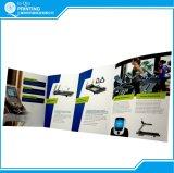 Folheto Tri-Folded Full Color Flyer Printing