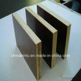 La película enfrenta la madera contrachapada/Fabricante de China Film enfrenta la madera contrachapada/18mm película enfrentó la madera contrachapada