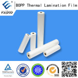 25mic BOPP Matte Themal Laminating Film for Leaflet
