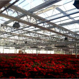 De landbouw Serre van het Glas van de multi-Spanwijdte voor Bloemen