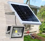 Indicatore luminoso di inondazione solare di alta qualità professionale del fornitore L-6