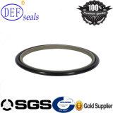 Seal kit de sellado / Paso de Hidráulica cyliner