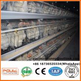 Автоматическое птицефермы вполне тип клетка цыпленка слоя батареи для сбывания