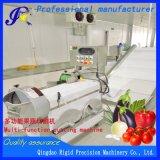 Корпус из нержавеющей стали автоматический резак овощей (жесткая рама)